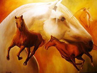 Cavalos      2006